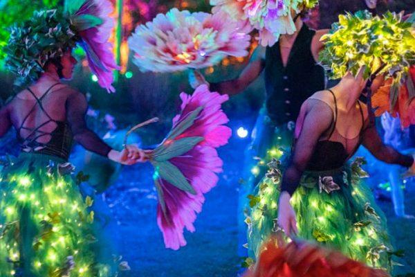 HighLight: Carnival of Lights
